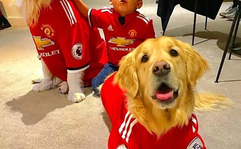 ยินดีต้อนรับสู่แมนเชสเตอร์, อะตอมและซังกะตาย (สุนัข Alexis) •• – ติดตาม @ inner.unite …