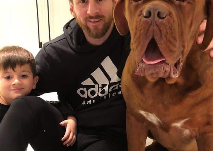 ฉันรักสายพันธุ์นี้ .. สุนัขเมสซี่เป็นเหมือนพระเจ้าของสุนัข .. รักคุณสวัสดีคุณเป็นเขื่อน …
